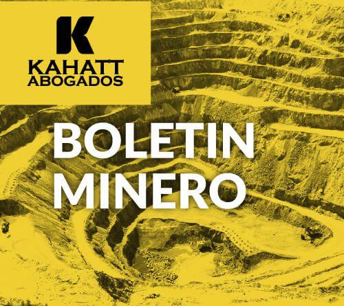 Boletin Minero 002