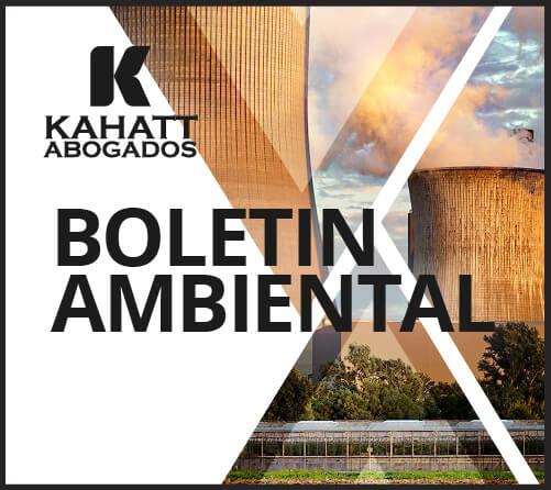 Boletin Ambiental 7